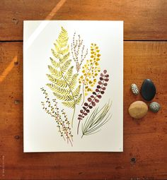 Plant mix no.02 - 8x10 Botanical Watercolor Collection