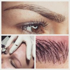 1000 images about microblading on pinterest eyebrow for Best eyebrow tattoo san diego