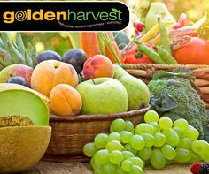 #WellnessWednesday: A healthy snack can help curb hunger throughout the day and provide energy as well as important nutrients. Make all of your snacks revolve around fruits and vegetables. #GoldenHarvest