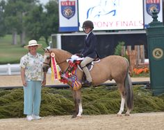 Armani, champion Welsh Small Pony Hunter, Pony Finals 2014, ridden by Maddie Schaefer
