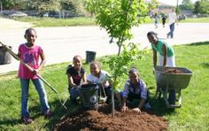 Photovoice project fosters youth tree stewards
