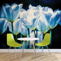 Huge Blue Poppies Photo Wallpaper Mural £44.99 - £54.99 This Blue Poppy Photo Wallpaper Mural is available in several different sizes Made to order, using the highest quality machines & materials 115g/m2 Paper Packaging Dimensions (cm) 118 x 10 x 10 Please allow 14 days delivery Free uk delivery only @ www.totsrus.site