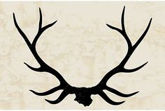 Stag Antlers on top of the Juanita Rojo Ranch--I want to try and DIY this