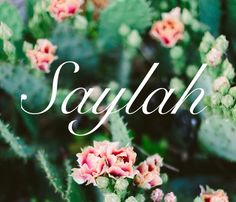 Saylah variation of Selah meaning: to pause reflect on Gods word Biblical names girl names baby names strong names S names names that start wi Strong Baby Girl Names, Baby Girl Names Biblical, Trendy Baby Girl Names, Biblical Names, New Baby Names, Cute Baby Names, Unique Baby Names, Kid Names, Strong Names