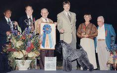 Best In Show 2003  Name: Ch Torums Scarf Michael Owner: Marilu Hansen Breed: Kerry Blue Terrier