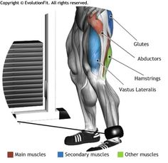 ABDUCTORS -  CABLE SIDE LEG RAISES