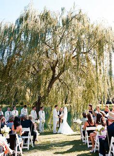 Outdoor wedding under weeping willow tree!