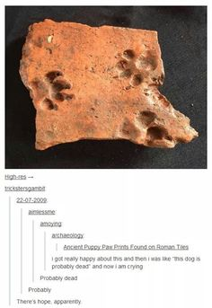 The immortal dog of ancient Rome