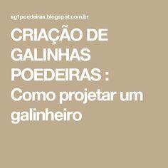 CRIAÇÃO DE GALINHAS POEDEIRAS : Como projetar um galinheiro