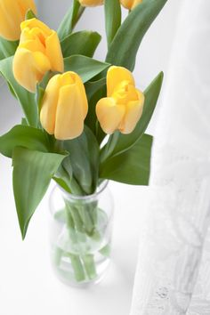 simple and lovely Table Flowers, Flower Vases, Yellow Tulips, Container Flowers, Mellow Yellow, Painting Inspiration, Planting Flowers, Glass Vase, Bloom