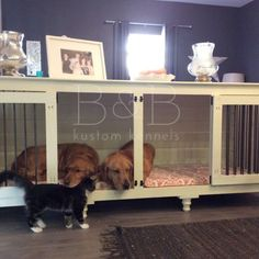 Double Indoor Dog Kennel
