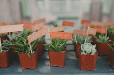 Lauren + Mario at Gardens of Bammel Lane   Two Be Wed. Individual succulent favors, thank you and let love grow!
