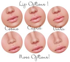 nose shapes and names - HD1500×1329