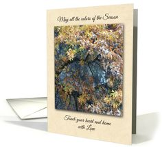 Thanksgiving - Colors of the Season card