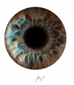 Realistic Eye Drawing, Au Ideas, Dslr Background Images, Halloween Eyes, 3d Street Art, Dragon Eye, Gray Eyes, Eye Photography, Doll Eyes