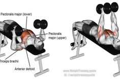 Decline hammer-grip dumbbell bench press exercise