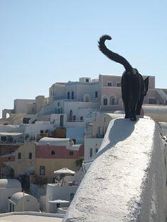 Greece, Santorini - the motherland.