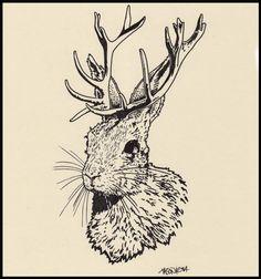 jackalope illustration - Google Search