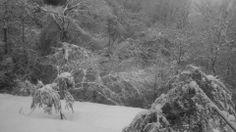 nevicata. Chiampo Italy