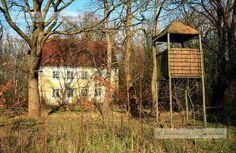 Panoramio - Photos by mv-naturpur > Halbinsel Wustrow