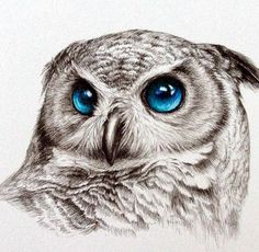 40 Color Pencil Drawings To Having You Cooing With Joy - Bored Art