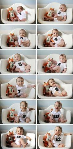 Fotos do desenvolvimento do bebê - Cadeira + Bichinho. Coloque sempre o mesmo bicho de pelúcia e o bebê vestindo um body branco com a estampa do número do mês correspondente.
