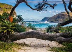 Nature, The Hole in the Wall, Coffee Bay, Wild Coast, Republic South Africa Stock Photo by Neja Hrovat South African Holidays, Les Seychelles, Les Continents, Cape Town South Africa, Beautiful Places To Visit, Beautiful Beaches, Africa Travel, Wanderlust, Dream Vacations