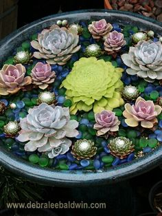 Succulents and glass rocks.  Beautiful