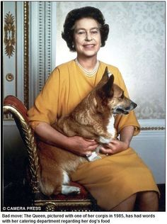 Queen Elizabeth 2 and one of her corgis.
