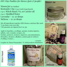 DIY Clay Poultice for Horses. I LOVE bentonite clay!  I have used it for so many purposes and there is so many creations you can do with it.  Get Creative!