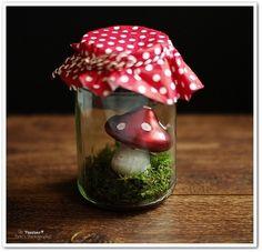 Glückspilz im Glas (Quelle: Pinterest/Testbar)