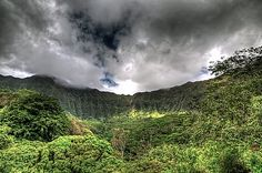 Maunawili Valley. Windward Oahu, Hawaii.