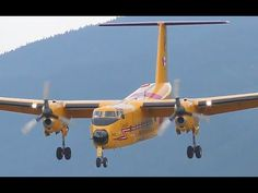 A Royal Canadian Air Force De Havilland Canada Buffalo 115462 is seen on approach and landing at CZNL in Nelson, British Columbia on a nice wind. Bush Pilot, Civil Aviation, Search And Rescue, Ducks, Airplanes, Landing, Alaska, Buffalo, Aircraft