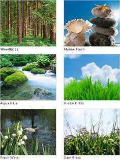 Microfresh, Naturaleza