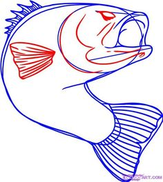 """Step Learn How to Draw a Bass Fish FREE Step-by-Step Online Drawing Tutorials, Fish, Animals free step-by-step drawing tutorial will teach you in easy-to-draw-steps how to draw """"How to Draw a Bass Fish"""" online. Shark Drawing, Boat Drawing, Painting & Drawing, Rock Painting, Dolphin Drawing, Fish Drawings, Art Drawings, Cooler Painting, Online Drawing"""