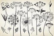 Botanical elements. More than 68! ~ Illustrations on Creative Market