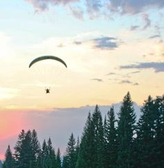 Snow King Resort is your escape to these great outdoors. Regardless of age, interests or abilities, there are endless things to do in Jackson Hole Wyoming. Jackson Hole Wyoming, Summer Activities, Things To Do, Wildlife, Skyline, St Andrews, Snow, King, Adventure