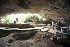 Hasta ahora se han encontrado restos fósiles y evidencias directas de la presencia de cinco especies diferentes en la cueva de Atapuerca: Homo sp. (aún por determinar, 1.200.000 años), Homo antecessor (850.000 años), Homo heidelbergensis (500.000 años), Homo neanderthalensis (50.000 años) y por supuesto Homo sapiens (nosotros). Eduardo, Víctor y Benji 1ºBach C