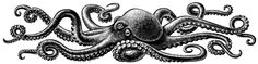 Octopus tattoo is a favorite marine life tattoo design for both women and men. Today, the octopus tattoo is a favorite decorative tattoo. Not only con. Octopus Tattoo Sleeve, Octopus Tattoo Design, Octopus Tattoos, Mermaid Tattoos, Sleeve Tattoos, Tattoo Designs, Tattoos Mandala, Tattoos Geometric, Foot Tattoos