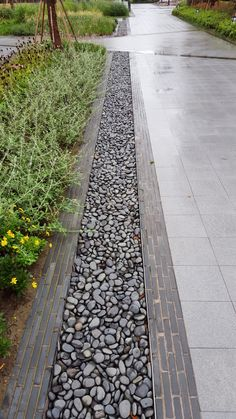 Paving edging - Paving edge and drainage Shanghai China 2014 Photo Ahmad Algilani
