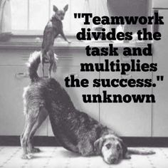 Teamwork quote : Teamwork divides the task and multiplies the success. Team Bonding  Corporate T
