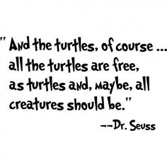 And the turtles, of course.all the turtles are free,as turtles and, maybe, all creatures should be. Seuss cute wall quotes sayings art vinyl wall decal Wall Quotes, Me Quotes, Book Quotes, Turtle Quotes, Dr Seuss, Turtle Time, Tortoise Turtle, Quotes To Live By, Simply Quotes