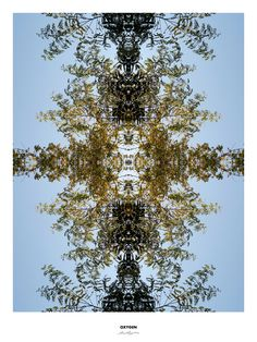 art gallery, art design, art poster, photocomposition, symmetric art, art print, tree, oxygen, OOO,