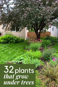 Trying to landscape a flower bed in your front yard underneath a tree and have no idea what to plant? It& not as hopeless as it seems. Here are 32 ideas of the best flowers, bushes, and ground cover you can grow. art design landspacing to plant