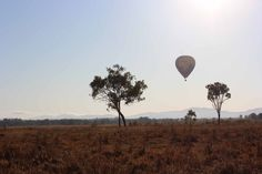 A beautiful morning out ballooning. Atherton Tablelands, Beautiful Morning, Regional, Places Ive Been, Bucket, Tropical, Australia, Outdoor, Outdoors