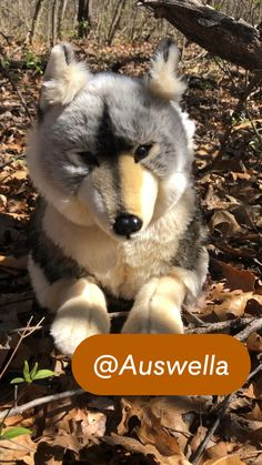 Timber Wolf, Husky, Plush, Dogs, Animals, Animales, Gray Wolf, Animaux, Pet Dogs