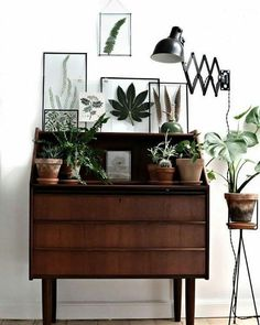 Loving vintage framed botanicals right now  Source: Pinterest  #interior4all #interiordecoration #interiordesign #interior #interiors #interiorstyling #homewares #homedecor #home #homestyling #botanicals #vintage #hallway #interiorsdailyau #boho #bohemianstyle #bohemianliving #bohemian