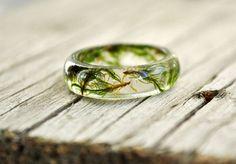 moss terrarium natural moss resin moss rings nature by VyTvir