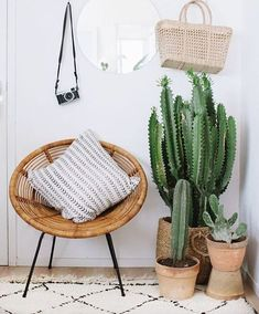 home decor plants diy plant stand, indoor plant stand ideas, wood plant stand design, ladder plant stand Cactus House Plants, House Plants Decor, Cactus Decor, Cactus Cactus, Living Room Plants Decor, Garden Plants, Interior Plants, Interior Design, Home Interior