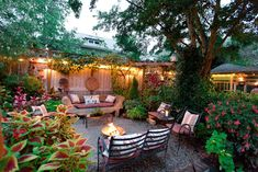 A summer evening in our back yard garden and patio